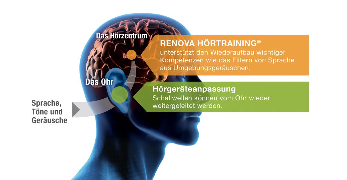 renova-training-prozess